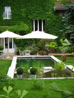 Natural swimming pool... Piscine contemporaine - Piscine naturelle contemporaine - baignade naturelle contemporaine | Atout-Piscines : le blog piscine