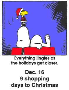 This is a classic countdown panel Christmas Quotes, Christmas Countdown, Christmas Humor, Christmas Fun, Peanuts Christmas, Charlie Brown Christmas, Charlie Brown And Snoopy, Snoopy Comics, Funny Comics