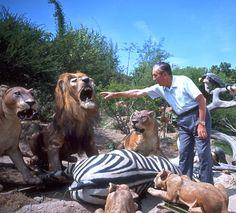 1964 Photos: Walt Disney and the Jungle Cruise at Disneyland Park