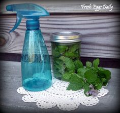 Lavender Mint Coop Refresh Spray - Helps repel rodents & insects; helps naturally calm hens