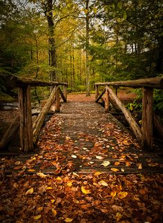 Bridge to Macedonia ~ Macedonia State Park  in Kent, CT