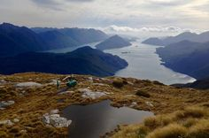 remote new zealand Te Anau, Australia Tours, New Zealand Landscape, Milford Sound, South Island, Pacific Ocean, Trip Advisor, Remote, National Parks