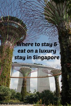 Singapore, perfect springboard into Asia: general, 2 hotels for a luxury stay & 12 restaurants for lovers of fine food