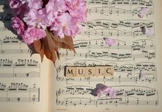 Sheet of music (with letters) (on canvas or framed) with pictures in the center Music aesthetic Floral Letters Sound Of Music, Music Love, Art Music, Music Is Life, Music Aesthetic, Character Aesthetic, Aesthetic Drawing, The Band's Visit, Angie Yonaga