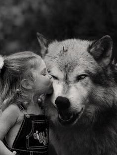 Wolf Gurus is the number 1 eCommerce site about wolf. until today we sell about Item About wolf, native america, viking, dream catcher. Beautiful Wolves, Animals Beautiful, Cute Animals, Wolves And Women, Alpha Wolf, Wolf Spirit Animal, Wolf Quotes, Wolf Love, Wolf Black