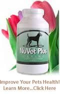 NuVet Plus will improve your pet's total health, from bones and joints to skin and coat.
