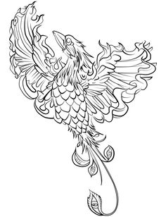 Adult Coloring Pages Animals