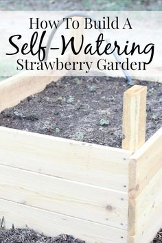 How to build a self-watering strawberry garden - it's so easy! #AD @lowes MyOutdoorOasis