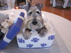 Schnauzer Dog Cake, way cool!