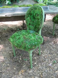 The Cultural Arts Center Display Garden from the Local Landscapers.  What a cool way to make a moss chair!