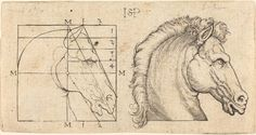 """Sebald Beham (German, 1500 - 1550) """"Two Horse Heads"""", unknown date engraving Pauli 'H.S.', no. 219 Rosenwald Collection Not on View The National Gallery of Art and its Sculpture Garden are located on the National Mall between 3rd and 9th Streets at Constitution Avenue NW, Washington, DC. Location Address: 4th and Constitution Avenue NW, Washington, DC 20565 tel: (202) 737-4215 web: http://www.nga.gov/"""