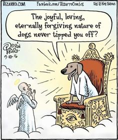 Because religion is laughable. Funny atheist/secular/religious memes, jokes, parody and satirical humour. Bizarro Comic, Funny Dogs, Funny Animals, Cute Animals, Funny Memes, Hilarious, Animal Funnies, Dog Memes, It's Funny