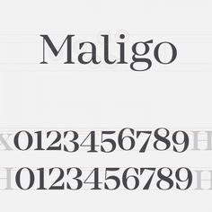 Rene Bieder's Mirador font family is based on a neoclassical typeface in different weights for various usages.