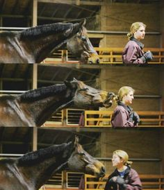 The language of the horse...my horse does this all the time when I am not paying attention to him.  ❤❤❤
