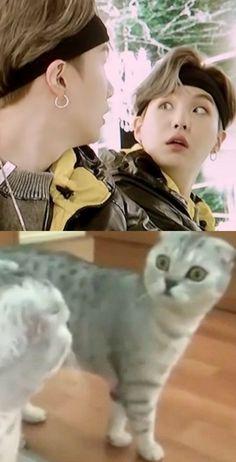 Min Yoongi Bts, Min Suga, Kpop, Min Yoonji, Bts Memes Hilarious, Bts Fans, About Bts, Meme Faces, Bts Photo
