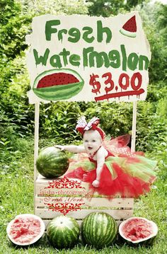 Fresh Picked Summer Watermelon Baby Crochet Tutu Dress - 3019