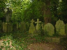 Old Cemeteries love them