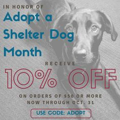 In honor of Adopt a Shelter Dog Month we'd like to offer you an online coupon code for 10% off orders of $50 or more all through the month of October. Use code ADOPT while shopping iLive, GPX or Zeki online stores. Happy shopping!