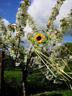 Litha Garden Sunflower Pentacle. Summer Solstice Rays of Awen Sun wheel. Sabbat Decoration. by PositivelyPagan on Etsy https://www.etsy.com/listing/232018967/litha-garden-sunflower-pentacle-summer