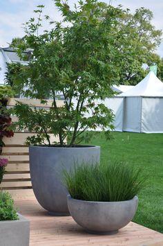 Planter round concrete Buy in the Greenbop online shop – Container Gardening Fall Planters, Garden Planters, Planter Pots, Pergola Patio, Backyard, Plantation, Back Gardens, Shade Garden, Flower Beds