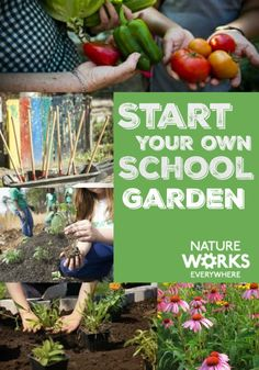 Get excellent gardening resources from Nature Works Everywhere, a program from The Nature Conservancy.