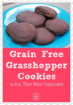Seriously, it's just like biting into one of the girl scout  grasshopper cookies, but without any of the nasty ingredients!
