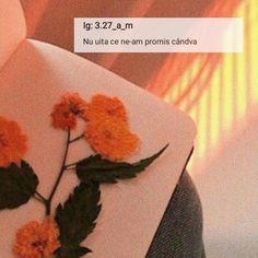 Leaf Tattoos, Like4like, Instagram, Flowers