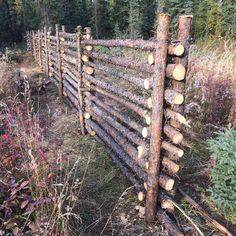 Farm Fence, Backyard Fences, Garden Fencing, Backyard Landscaping, Farm Projects, Garden Projects, Farm Gardens, Outdoor Gardens, Landscape Design