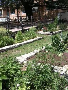 Bryker Woods Elementary School Garden