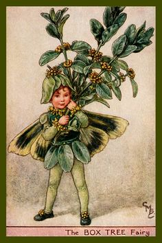The Box Tree Fairy by Cicely Mary Barker from the 1920s. Quilt Block of vintage fairy image printed on cotton. Ready to sew.  Single 4x6 block $4.95. Set of 4 blocks with pattern $17.95.
