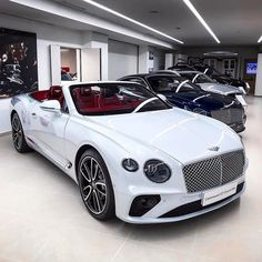 Audi, Porsche, My Dream Car, Dream Cars, Bentley Convertible, Bentley Gt, Lamborghini Cars, Ferrari Car, New Luxury Cars