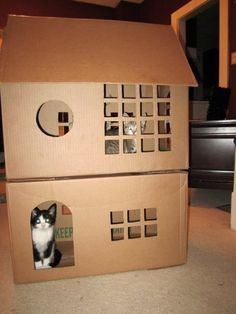 Cardboard cat house - The ultimate box Kitty y Wall-e Cardboard Cat House, Cardboard Playhouse, Cat House Diy, Cat Towers, Cat Enclosure, Cat Room, Cat Condo, Pet Furniture, Cat Accessories
