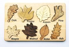 Leaf puzzle, Montessori puzzle, Christmas gift, wooden puzzle, stem toy - New Site Montessori Materials, Montessori Toys, Montessori Education, Montessori Toddler, Wooden Board Games, Wood Games, Bois Diy, Wooden Puzzles, Leaf Shapes
