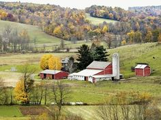 Amish Country cherylsayank