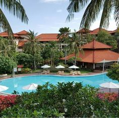 WEBSTA @ ayodyabali - Our main pool spotted from the balcony! 📷: @dpa_sh #pool #resort #bali #ayodyaresort #holiday 😎🌴