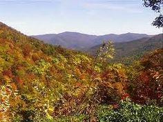 Chattahoochee National Forest in Georgia. <3 nana gloria