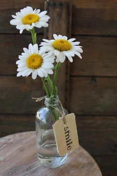 bottle of daisies