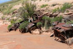 Old cars used to stabilize the banks of Dead Wash on the old Route 66.