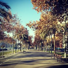 La Diagonal on an early sunday morning :)  (Barcelona, Spain)