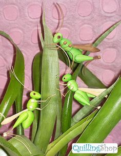 Grasshoppers - by: Quilling Shop - www.facebook.com/photo.php?fbid=441520415935168=a.170289799724899.47736.100002316395102=1