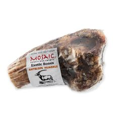Mosaic — USA-Sourced Antelope Humerus Bone Dog Bones, Dog Teeth, Dog Chews, Healthy Alternatives, Food Allergies, Your Pet, Exotic, Mosaic, Usa
