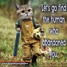 i save the animals, je sauve les animaux!