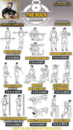 The Rock Arms Workout Routine. How Dwayne Johnson gets huge arms. Massive Biceps and Triceps. The Rock Arms Workout Routine. How Dwayne Johnson gets huge arms. Massive Biceps and Triceps. Pop Workouts, Gym Workout Tips, Chest Workouts, The Rock Workout Routine, Arm Workouts For Men, Arm Workout Men, Workout Routines For Men, Routine Work, Workout Exercises