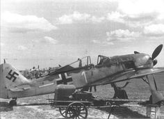 While the Fw 190 was slow to arrive to southern units on the Ostfront, the dire nature of the battle in the Kuban saw the aircraft deployed to the theater. With its wider track undercarriage, it proved to be better suited to rough airfields than the Bf 109. The powerful BMW 801 engine powering the aircraft allowed for heavy payloads to be carried, with the Fw 190 pressed into service as a fighter-bomber on occasion. While it made its mark in the Kuban, however, the more elite pilots of JG…