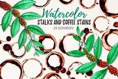 Watercolor Coffee Stains and Stalks by iGRAPHOBIA on @creativemarket