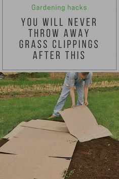 9 Things To Do With Grass Clippings You Probably Never Thought Of garden ideas gardening ideas gardening for beginners gardening design gardening tools gardening hacks gardening and landscape gardens and gardening ideas Gardening For Beginners, Gardening Tips, Flower Gardening, Gardening Websites, Balcony Gardening, Home Vegetable Garden, Hardy Plants, Garden Pests, Garden Grass