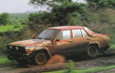 Safari Rally Shekhar Mehta 1981 Datsun 160J