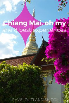 Heading to Northern Thailand? From cooking classes to crowded markets, you won't miss the 8 best travel experiences in Chiang Mai!