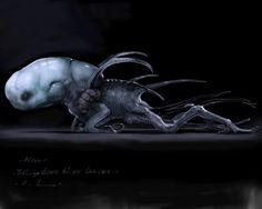 This is an abbreviated version of my Prometheus portfolio.. Beluga-head larvae