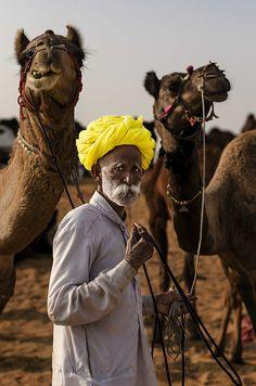 The Man with his camels at Pushkar Fair, Rajasthan, India © Akilan Thamaraiselvan